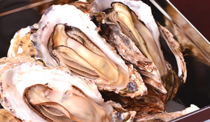 牡蠣のガンガン焼き【夏期限定】